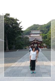 鎌倉鶴岡八幡宮の境内にて(2014年6月)